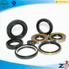 TC/SC high quality NBR/PTFE/PU /VITONeach kind oil seal made in china