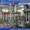 Integrated lemonade/orange fruit juice bottling plant/filling machine/production line