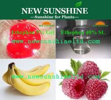Plant growth regulator Ethephon ethrel