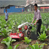 186F diesel portable farming mini small power tiller tractor new design 9HP price