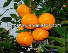 Honey Sweet Mandarin Seed For Growing