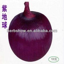 Hybrid Purple Onion seeds For Growing