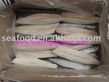frozen fish-spanish mackerel fillet