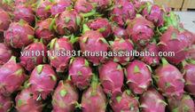 Vietnam Fresh Dragon fruit