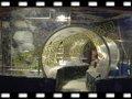 acuario de acrílico del túnel