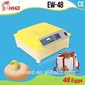 automático completo e preço melhor frango aves equipamentos agrícolas