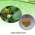 고품질의 현재 맛 세척 arabica 녹색 커피 콩