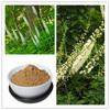 honghao 100% natural black cohosh p.e. triterpene glycosides