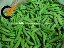 new crop frozen sugar snap peas
