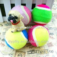 Pet dog tennis ball