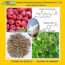 Raspberry Ketone Extract from China Manufacturers