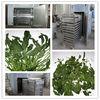 hongle model industrial Vegetable drying machine