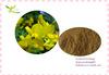 100% Natural Butcher Broom Extract Powder