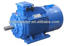 Y2 induction three phase scrap electric motor