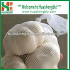 Wholesale fresh garlic from China