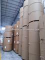 Haute- en vrac de papier c1s/boîte pliante bord./fbb de manufacture