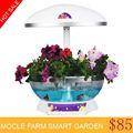 offerte di ceramica lampade decorative