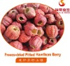 Freeze Dried Pitted Hawthorn Berry