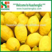 Top quality China citrus fresh lemon