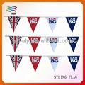 led de plástico empavesado banderas de verano productos banderas de cadena