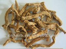 Angular Solomon seal,Scented,Fragrant solomonseal rhizome,Drug,Polygonatum odoratum,officinale,Radix polygonati officinalis,odor