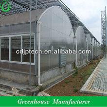 polycarbonate sheet modern greenhouse