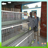 Low price Low carbon steel wire chicken layer cages for farm,poultry cages