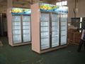 Upright showcase/geladeira/display cooler