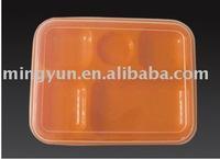 Plastic school lunch box