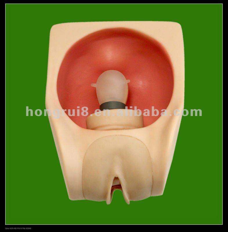 HR/F9B Передовой модель женского презерватива, женские ...