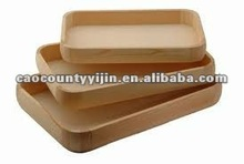 2012 new serving trays