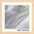100% algodão com o padrão de bandas hotel roupa de cama