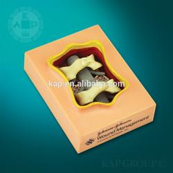 vertebra column operative medical model,for teaching use