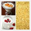 halal food gelatin/Jello Kosher Food Gelatin for yoghourt