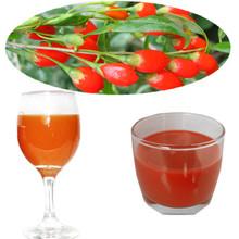 High quality best goji berry juice drink