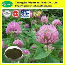 GMP red clover powder extract isoflavone powder / p.e.