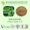 Natural Lemon Balm extract powder in bulk