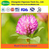Pure 20 isoflavones red clover extract p.e.