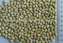 China Arabica Peaberry Green Coffee Bean