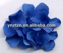 multi colors preserved rose petals