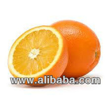 Fresh Orange - Green line Export Company