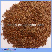 High Quality and Organic Flax seed