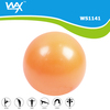 20cm Gym Pilates Ball/Small Yoga Ball