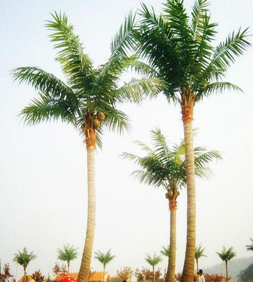 شجرة ضخمة الديكور الاصطناعي جذع شجرة