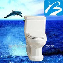 Western Bathroom House Design Sanitary