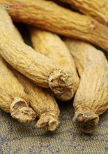 Pure Natural Ginseng P.E.80% with free sample