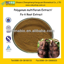 GMP Factory Supply Natural Polygonum Multiflorum (Fleeceflower Root Extract)
