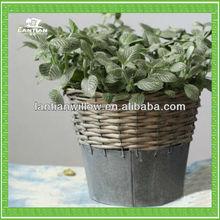 Exquisite willow garden basket/2014 Fashionable wicker handmade easter garden decoration from manufacturer