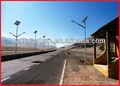 energía solar al aire libre poste de la lámpara del poste