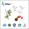 Stable Supplier Hawthorn Extract Manufacturer Since 1998